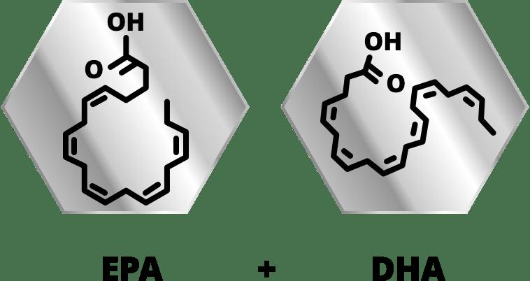 Omega 3 Xtreme SS formula