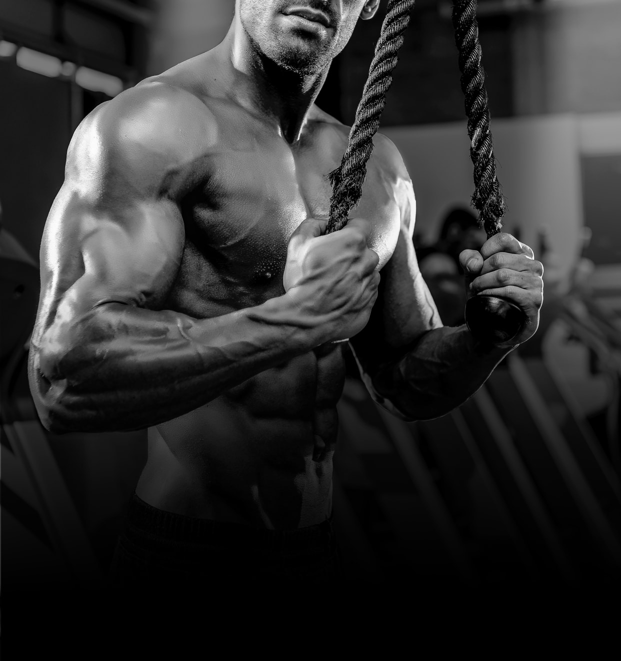 XCore Muscle