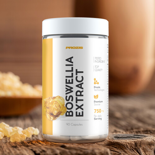 Boswellia Extract 250mg 90 caps