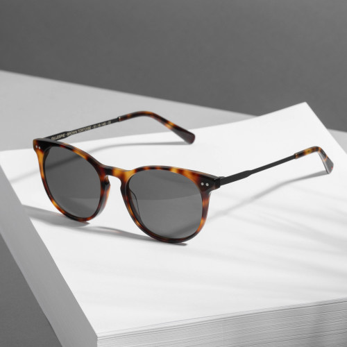 Gillespie Sunglasses - Brown Tortoise