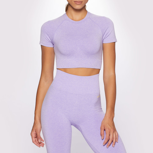 Crush Alpine Crop T-Shirt - Purple