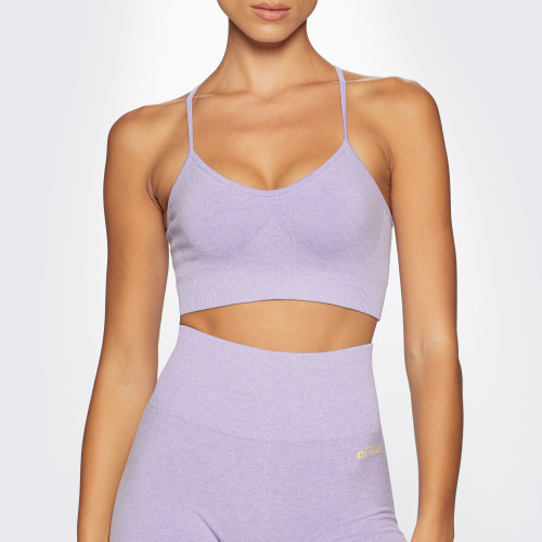 Soutien-gorge Sport Crush Alpine - Purple