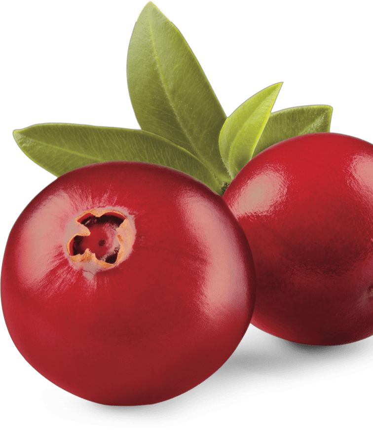 Prozis Cranberry Extract
