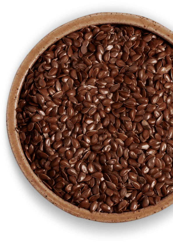 Vegan Omega 3 Flaxseed Oil