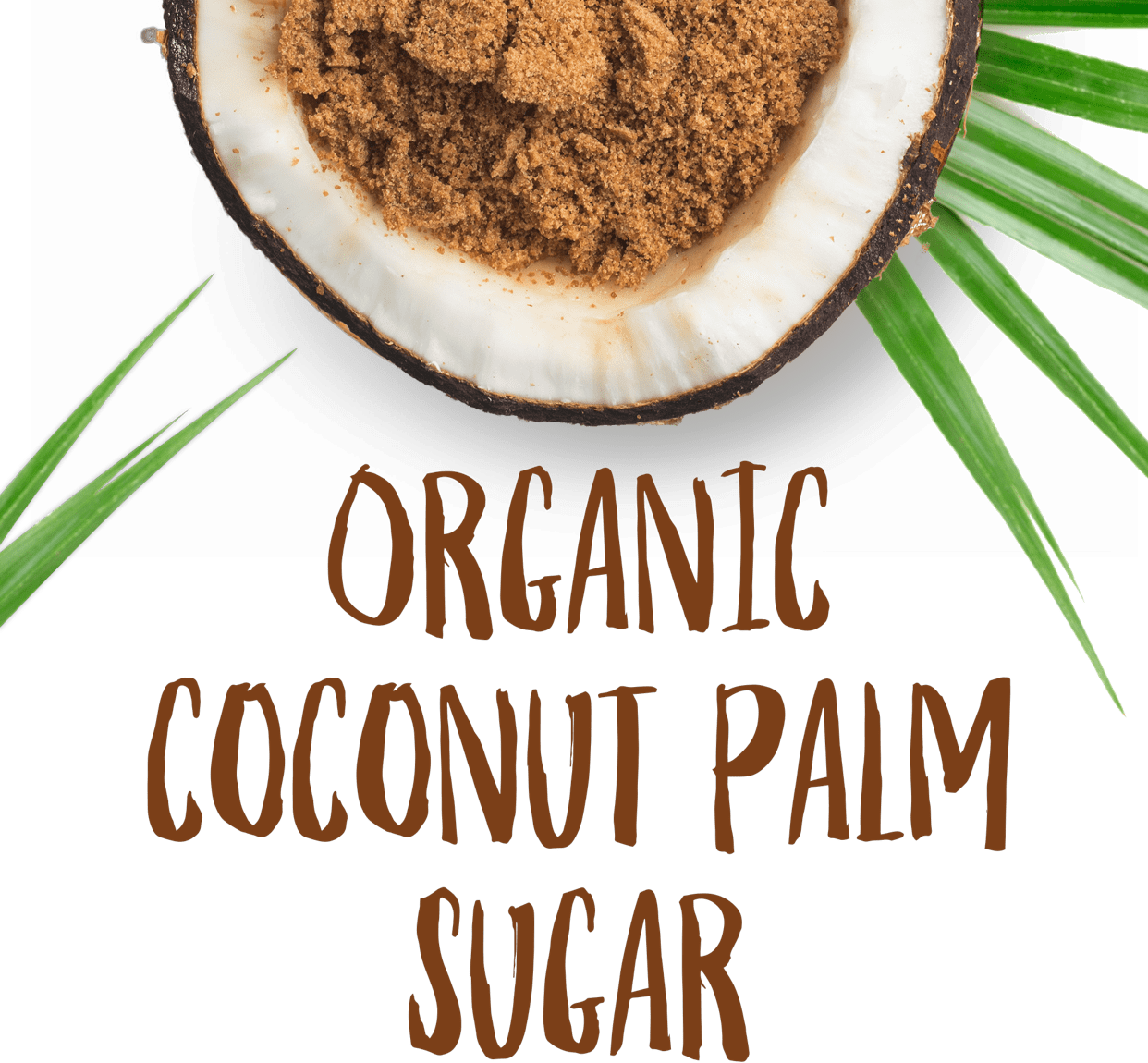 Organic Coconut Palm Sugar Powder