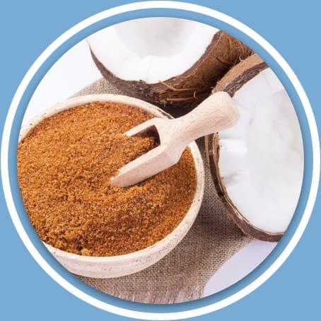 Organic Coconut Palm Sugar Powder