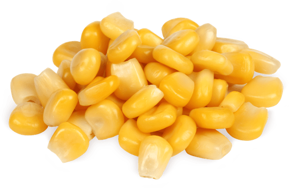 Prozis Waxy Maize