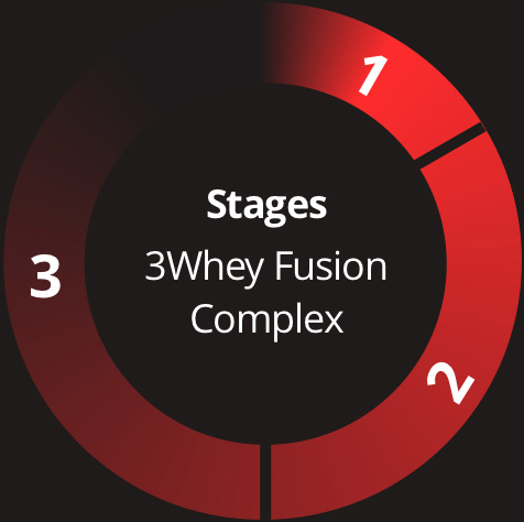 Whey Protein Fusion Stages
