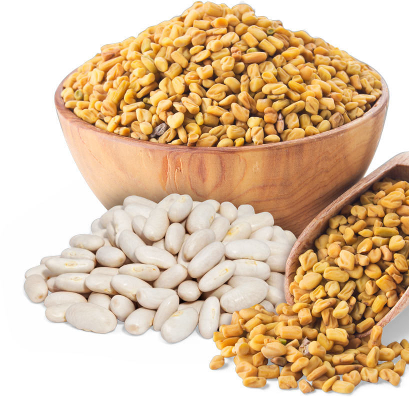 Prozis White Kidney Bean + Fenugreek