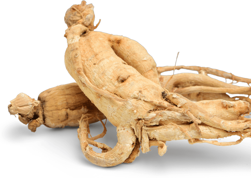 Prozis Korean Ginseng